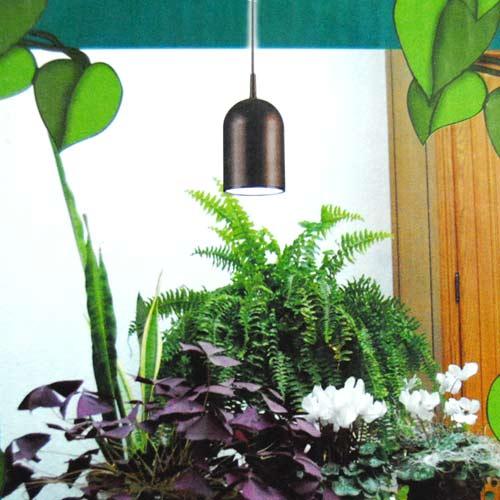 pflanzenleuchte paulmann plantina pflanzenlampe. Black Bedroom Furniture Sets. Home Design Ideas